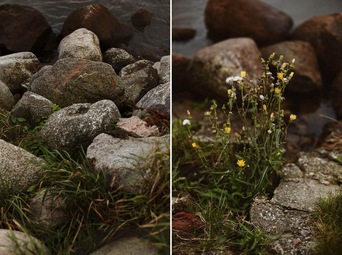 sesja narzeczeńska - nadmorska roślinność