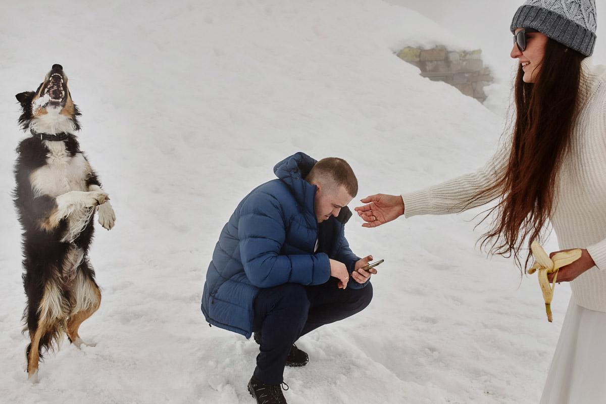 dokarmianie psa w górach