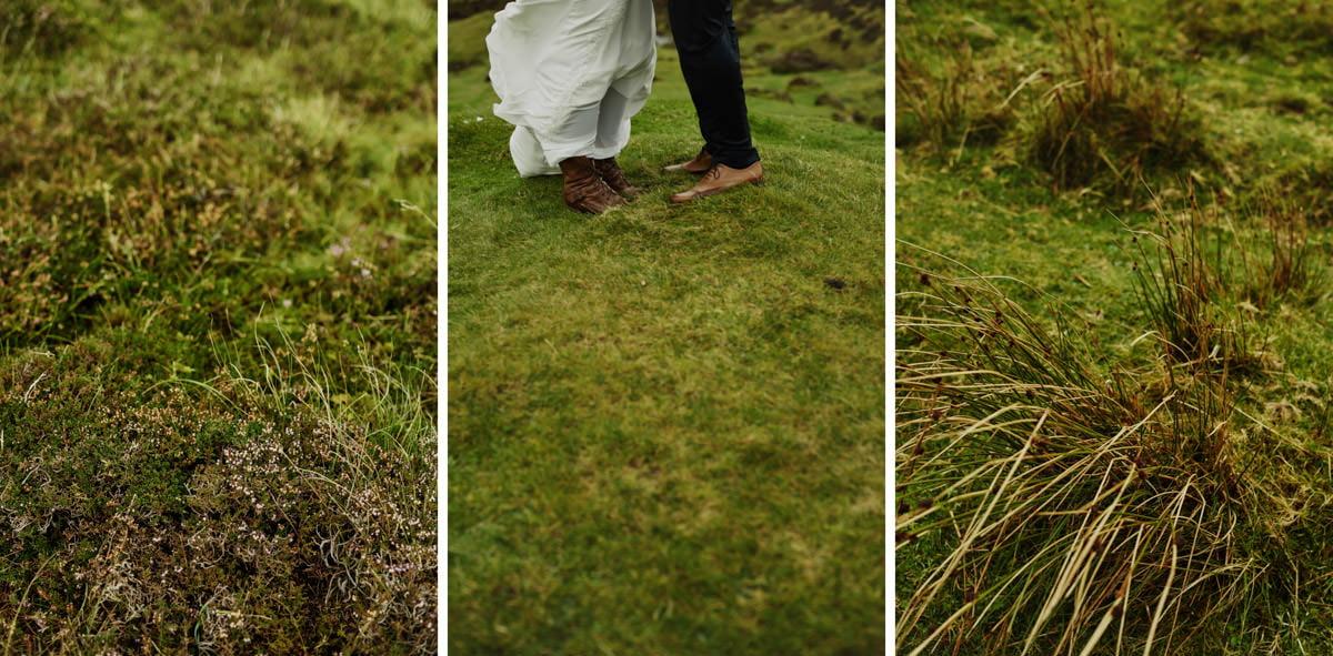 zielone łaki w Szkocj