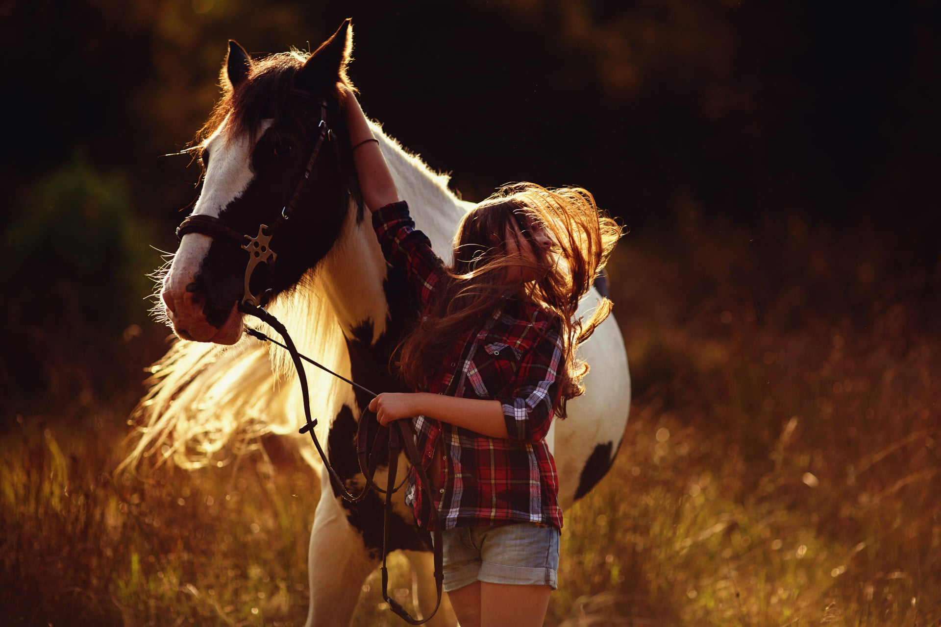 sesje z końmi