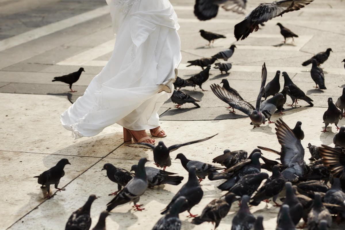 Mediolan -gołębie na placu Duomo